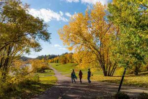 people walking along a trail with fall leaves and colors