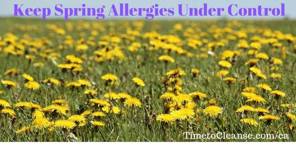 Grass and yellow flowers with Keep spring allergies under control banner