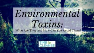 Environmental Toxins- What Are They and How Can You Avoid Them_