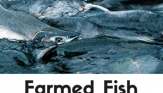 Farmed Fish: What You Need to Know (& Why You Need to Avoid Them!)