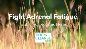 fight adrenal fatigue