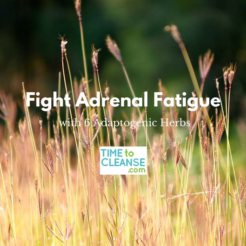 fight adrenal fatigue
