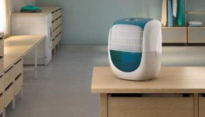 Clean Home: Dehumidifier