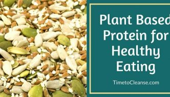 Sources of Quality Plant Based Protein for Healthy Eating