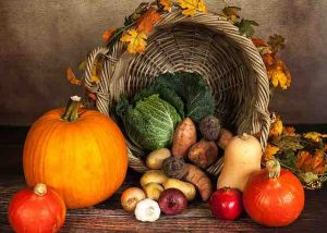 thanksgiving cornucopia with vegetables