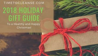 2018 holiday gift guide with simple present and christmas tree branch