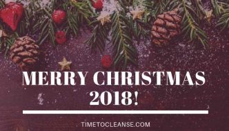 merry christmas 2018 with christmas tree branches ornaments and pine cones